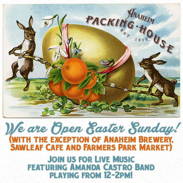 Packing House Easter Email Blast Design created using Photoshop. Vintage illustration layered with Packing House branding. Colors, text and texture to match.